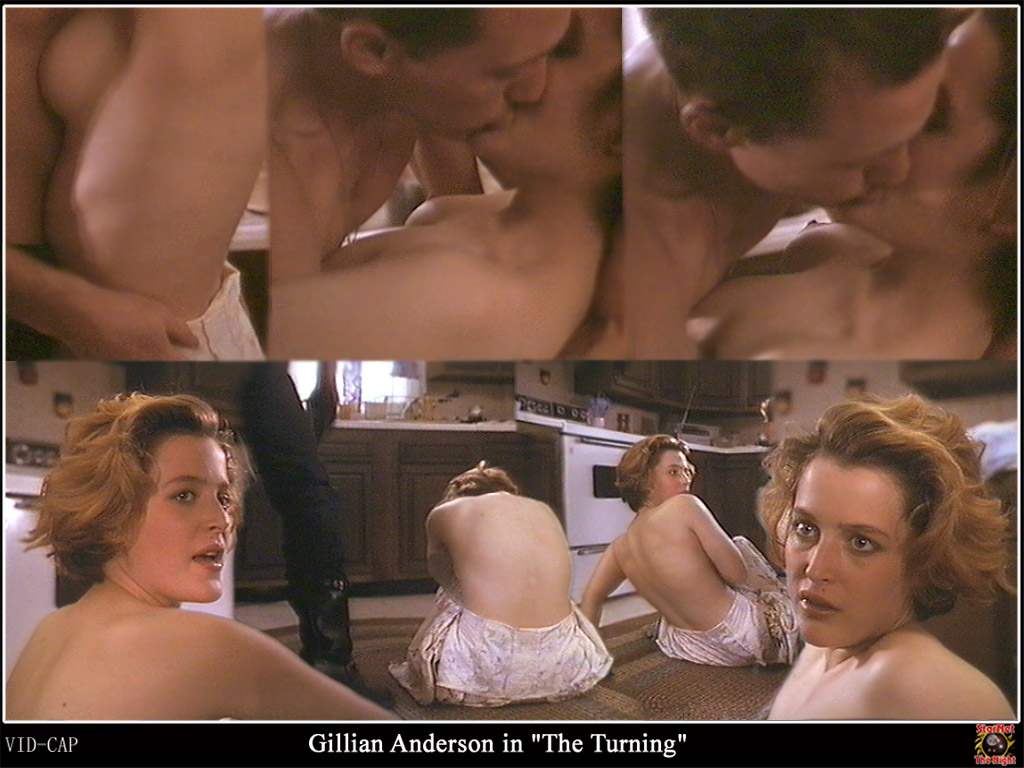 gillian anderson the turning